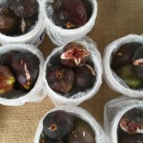 Beautiful, plump figs